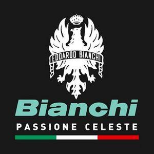 Coppia di copertoncini Pieghevoli Bianchi Reparto Corse 700x25-120 TPI Bianchi