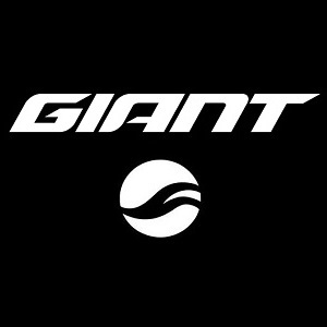 GIANT REIGN ADVANCED FRAMESET